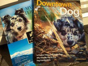 dog magazine image