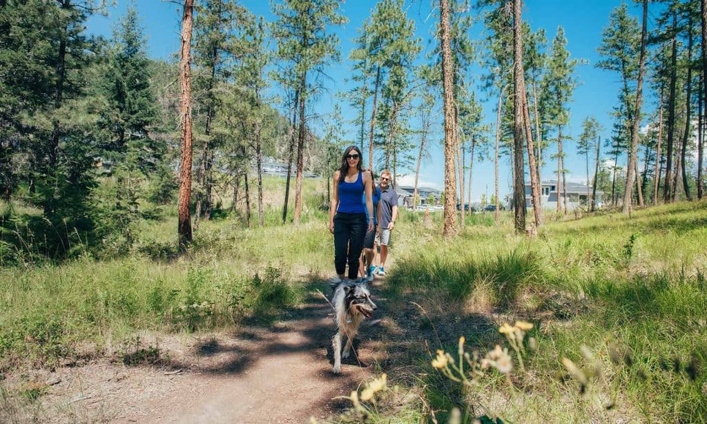 Family with dog on Wilden trails image