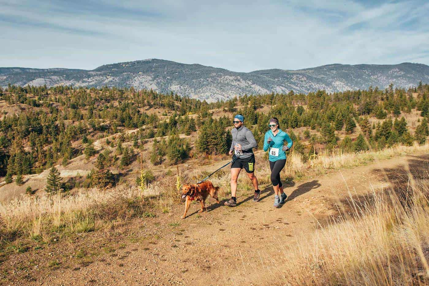 Kelowna Trail Runner with dog image
