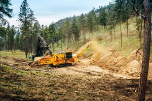 Wilden fire mitigation wood grinder/chipper image